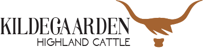 Kildegaarden Highland Cattle